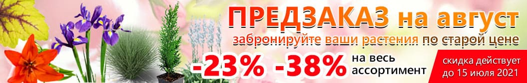 Скидки на товары 23%